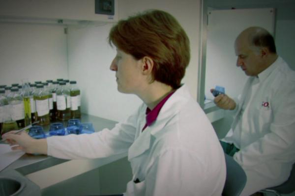 olive oil laboratory 4